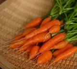 Eating Carrots Can Minimize the Risk of Breast Cancer by 60%, Study