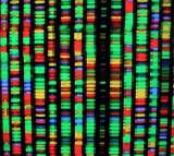 Genomic Workshop