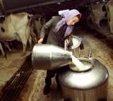 Amish Life In Pennsylvania