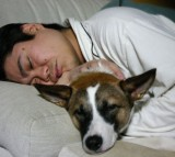 Letting Sleeping Dogs, Lie