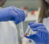 Scientists Were Able To Develop Antibiotic Spider Silk