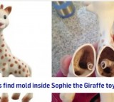 Parents Find Mold Inside Sophie the Giraffe toy