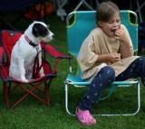 Keep Pet Medication Away From Children