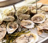 Study Finds New Bacterial Strain Contaminated Atlantic Oysters And Shellfish