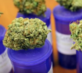 DEA Approves Revolutionary Weed Study on Veterans With PTSD