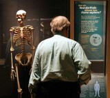 New Research Reveals Neanderthal Heal Habits [VIDEO]