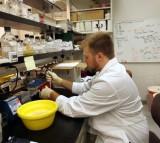 At a genetics laboratory