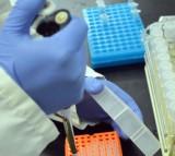 Prepping DNA