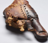 Prosthetic toe is over 3000 years old