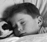 Human-Canine Co-Sleeping is One of Many Historical Sleeping Arrangments