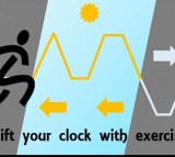 Shift Your Body Clock with Exercise (IMAGE)