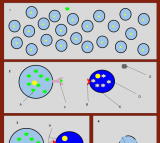 File:Cytotoxic T Cell Killing an Infected Cell