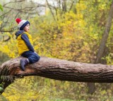Child in a Tree (IMAGE)
