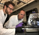 Researchers (IMAGE)