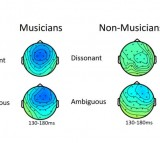 Topographic Map of How the Brain Reacts in Musicians and Non-Musicians (IMAGE)