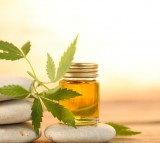 Can The Best CBD Oil For Anxiety Really Help You Long Term