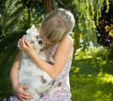Pets and Their Healing Powers