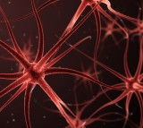 What Every Parent Needs to Know About Neurofeedback for ADHD