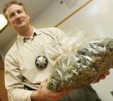 Marijuana School Opens