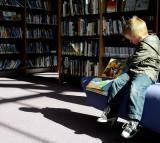 school, child, kid, library