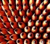 pencil, writing
