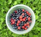 berry, fruit