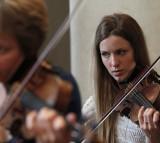 music, violin, musician