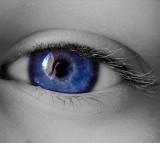 eye, pupil
