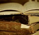 books, language