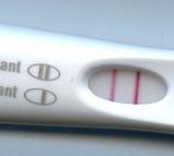 Fertile, Pregnant