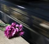 suicide, train