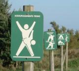 Exercise,Aerobics