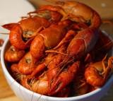 Lobster Crawfish Shear Orange Red Eyes Body