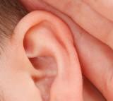 Closeup Communication Deaf Ear Female Girl Gossip