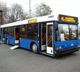 Bus, Public Transit
