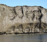 A riverbank exposure of the ice-rich syngenetic permafrost (yedoma) containing large ice wedges