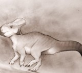 New Dinosaur Species Suggests Giant Sea Separated East and West of North America