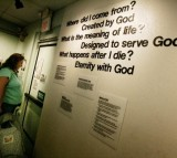 Pro-creationism Laws Evolution in the U.S. Tracked by a Study